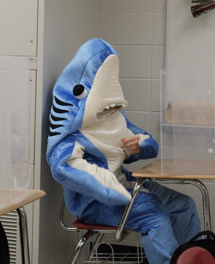 SWIMMING ALONG Andrew Forzt, senior, studies Pre-Calc in shark costume
